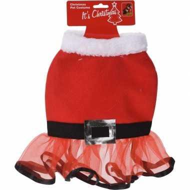Kerstjurkje voor de hond 30 cm